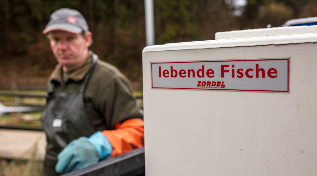 Fischtransportlehrgang
